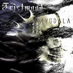 Tristwood - Amygdala